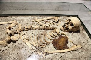 800px-Vampire_skeleton_of_Sozopol_in_Sofia_PD_2012_05