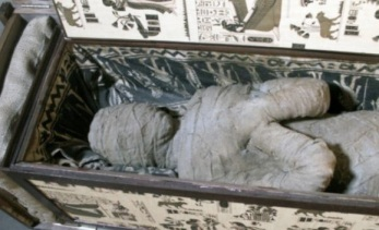 Photo via Daily Mail, of the fake German mummy in its sarcophagus.