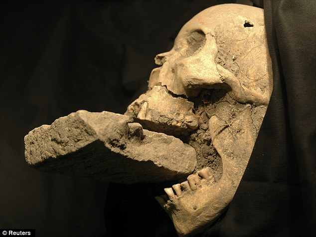"Skull of the 16th century Venetian ""vampire"" found with a stone in her mouth. Image Credit: Daily Mail"