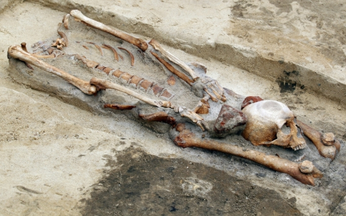 Vampire burial found near the town of Gilwice, Poland.   One of our skeletons found buried with their heads between their legs. Image Credit: The History Blog