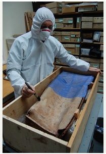 Photo via the Tamworth Herald of the coffin being examined.