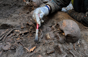 Skeletal remains found during excavation at Durham University.  Image Credit: Durham University Department of Archaeology.