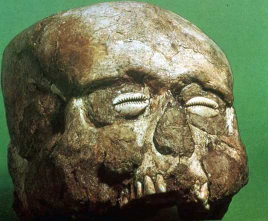 Photo via the University of Texas; Plaster Skull unearthed from Jericho.