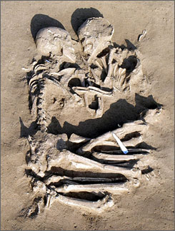 Photo via USA Today of 5000-6000 year old grave of couple in Mantua, Italy
