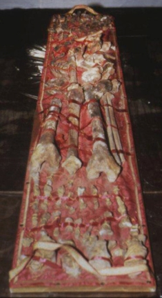 Skeletal remains purported to belong to Charlemagne, King of the Franks. Image via The Local, click here to see full size image.