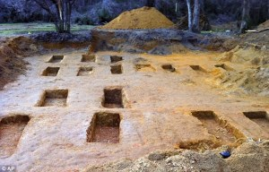 Some of the graves that were excavated at the reform school. From the Daily Mail. Click here to see more photos.