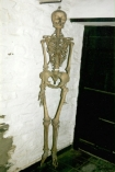 Skeleton of Joan Wytte, the Fighting Fairy Woman, displayed at the Museum of Witchcraft in 1998.  Image Credit: Museum of Witchcraft  Click here to see full size image.