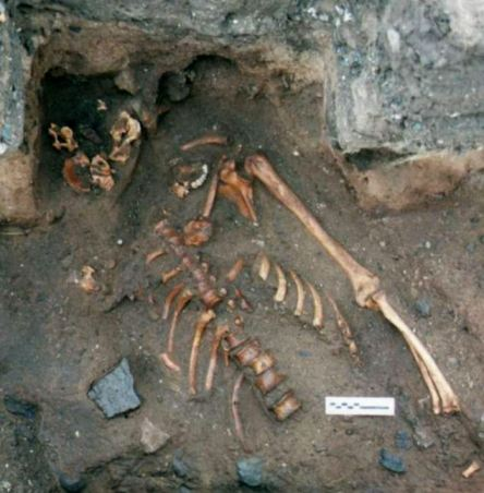 Bones of 900 year old murder victim unearthed in Scotland.  Photo credit: DailyMail