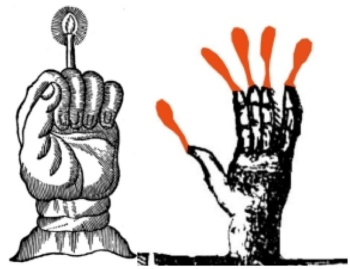 Drawings of two versions of the Hand of Glory.  In one version the hand is a candleholder, in the other all 5 outstretched fingers are lit as candles