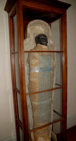 Padihershef's mummy on Display at the Ether Dome, before the analysis and restoration.  Image Credit: Curious Expeditions on Flickr