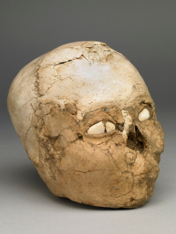 The Jericho skull at the British Museum.  Image Credit: British Museum