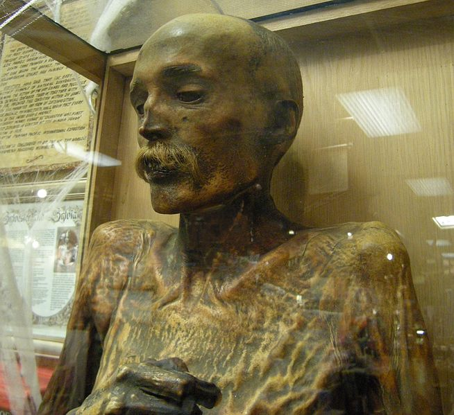 Sylvester the Mummy on display at Ye Olde Curiosity Shop in Seattle. Image Credit: Wikipedia