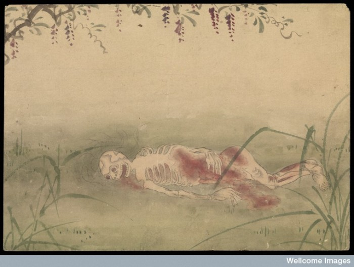Kusozu: the death of a noble lady and the decay of her body, panel 7 of 9. The body has started to skeletonize; much of the soft tissue has been removed. Image Credit: Wellcome Collection