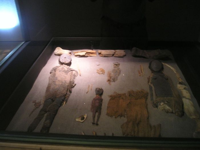 Chinchorro mummies at the museum in San Miguel de Azapa.  Image Credit: Wikipedia