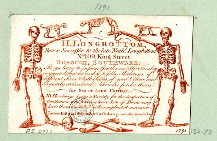 "Trade card for H. Longbottom ""skeleton supplier"" ca. 1791. Image credit: British Museum"