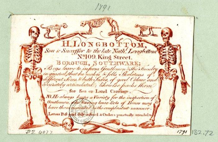 "Trade card for H. Longbottom ""skeleton supplier"" ca. 1791. Image credit: British Museum"