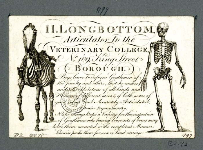 "Trade card for H. Longbottom ""skeleton supplier"" ca. 1797. Image credit: British Museum"