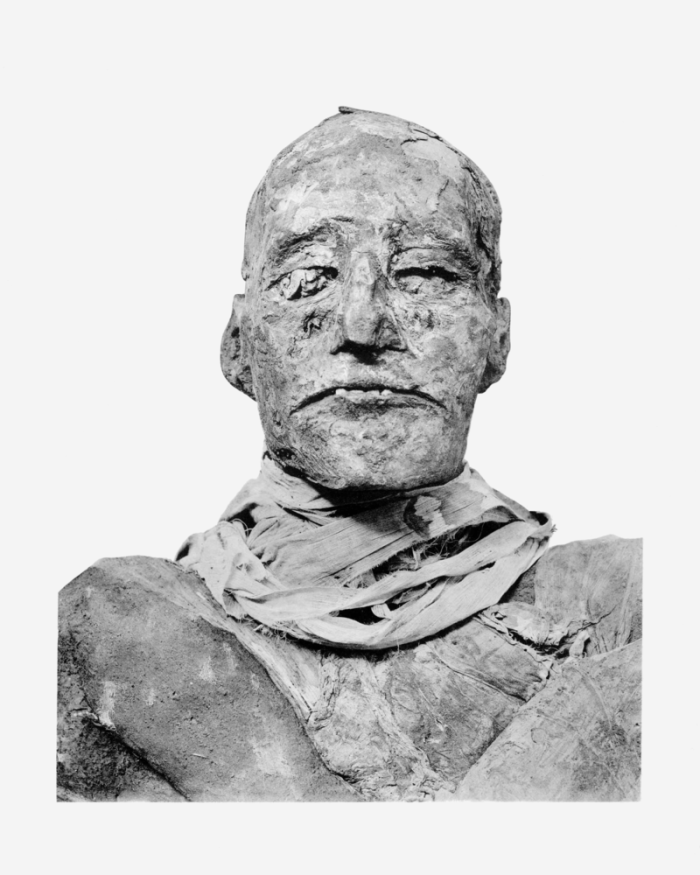Mummy of Ramesses III.  Image credit: Anton Gutsunaev on Wikipedia.