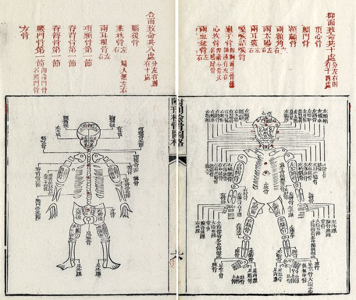 Names of human bones in Sung Tz'u's The Washing Away of Wrongs, 1843 edition, edited by Ruǎn Qíxīn. Image from Wikipedia