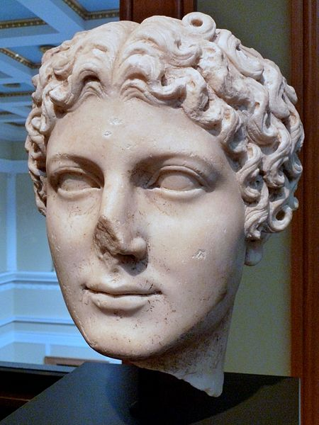 Marble head of Julia Agrippina from the Getty Villa Collection.  Image credit: Dave & Margie Hill via Wikipedia
